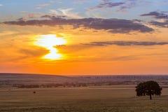 Tramonto variopinto nuvoloso sopra le colline e gli alberi, Fotografie Stock Libere da Diritti