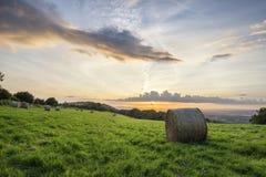 Tramonto vibrante di bella estate sopra il paesaggio della campagna del fi Immagine Stock