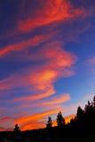 Tramonto in Yellowstone Fotografia Stock Libera da Diritti