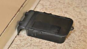 Trampa del ratón Imagen de archivo libre de regalías