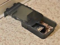 Trampa del ratón Fotografía de archivo