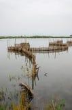 Trampas de lámina tradicionales de la pesca usadas en humedales cerca de la costa en Benin Foto de archivo