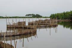 Trampas de lámina tradicionales de la pesca usadas en humedales cerca de la costa en Benin foto de archivo libre de regalías