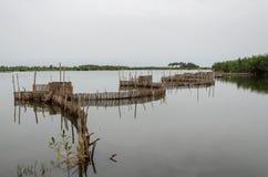 Trampas de lámina tradicionales de la pesca usadas en humedales cerca de la costa en Benin Fotografía de archivo