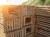 Trampas de la langosta en una playa, Belice Foto de archivo libre de regalías