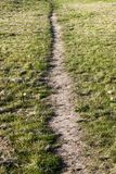 Path on the lawn. Trampled in the grass path in the field. Photo spring close-up. Feed at the top and at an angle Royalty Free Stock Image