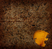 Trampled Rose. A vintage yellow rose petal trampled on the ground Stock Photo