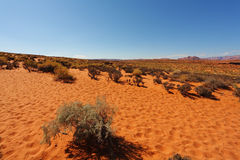 Trampled sandy slope Stock Photography