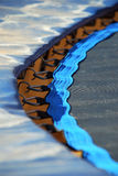 Trampoline edge. The edge of a blue trampoline, showing the springs and connecting metal hooks Stock Image