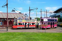 Trams at Seaton station. View of Seaton Electric Tramway Trams outside the tram station, Seaton, Devon, England, UK, Western Europe stock photo