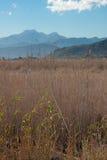 tramuntana гор стоковые фотографии rf