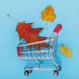Tramwaj z liśćmi na błękitnym tle fotografia stock