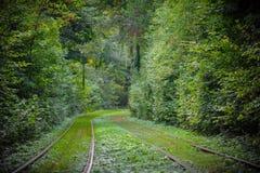 Tramwajowi poręcze w lasu parka miasta strefie Obraz Stock