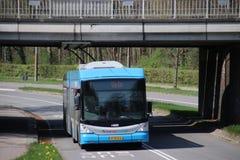 Tramwaju autobus w Arnhem, autobus przychodzi od Oosterbeek i jeżdżenia z elektryczność kablami zdjęcie royalty free