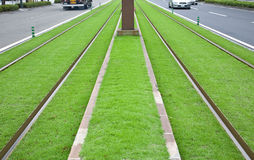 Tramway tracks on green lawn. In Japan Stock Image