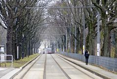 Tramway tracks at separate lane in an alley Stock Images