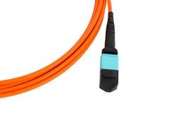 Trança da fibra ótica MTP (MPO), conectores do patchcord imagem de stock royalty free