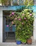Tran Hung Dao Alleys arkivfoto