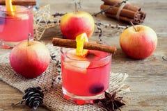 Tranbär och äppelcider arkivbild