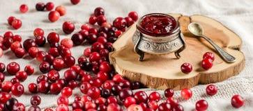 Tranbär och driftstopp i en silverkrus royaltyfria foton