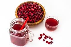Tranbär och fruktsaft royaltyfria foton