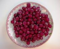 Tranbärbär på ett uppläggningsfat arkivfoton