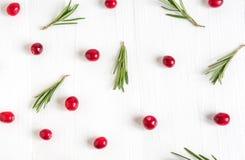 Tranbärmodell på vit träbakgrund Bakgrund med tranbär Användbara bär Lekmanna- lägenhet, bästa sikt royaltyfri foto