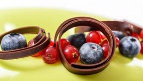 Tranbär- och blåbärfruktkaka Arkivfoto