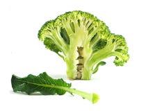 Tranche de brocoli sur le fond blanc Images libres de droits