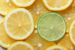 Tranche de chaux parmi des citrons, plan rapproché Image stock