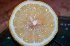 Tranche de citron juteux photo stock