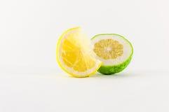 Tranche de citrons Image stock