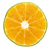 Tranche de fruit d'orange ou de citron Photographie stock libre de droits