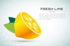 Tranche de fruit de chaux ou de citron Logo de jus de limonade Photos stock