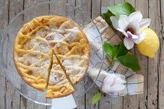 Tranche de gâteau de grand-mamans Image stock
