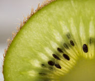 Tranche de kiwi Images libres de droits