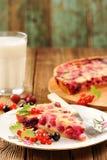 Tranche de tarte de groseille à maquereau du plat blanc, du verre de lait et du tarte sur le RO Photographie stock libre de droits