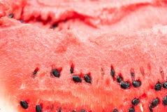 Tranche fraîche de fin de pastèque de jucy  Photographie stock