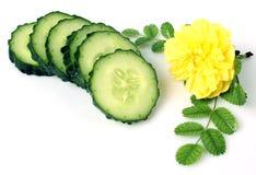Tranche fraîche de concombre Images stock