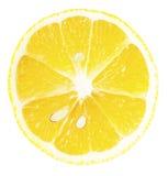 Tranche mûre de citron Images stock