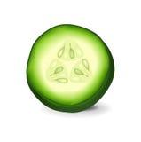 Tranche simple de concombre sur le blanc Image libre de droits