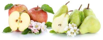 Tranche verte rouge de fruits de poires de pommes d'Apple et de poire d'isolement sur W Image stock