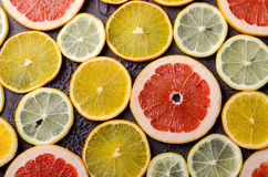 Tranches d'agrumes de citron, orange, pamplemousse sur le fond foncé Photo stock