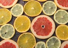 Tranches d'agrumes de citron, orange, pamplemousse sur le fond foncé Photos libres de droits