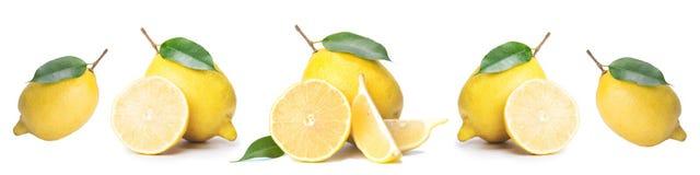 Tranches d'isolement d'agrume, coupe de fruit frais en demi citron, dans une rangée, sur le fond blanc images libres de droits