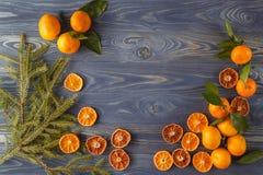 Tranches d'orange, de citron, de cannelle, de clous de girofle, de cardamome et de pi secs Images libres de droits