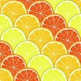 Tranches d'orange, de citron et de pamplemousse illustration libre de droits