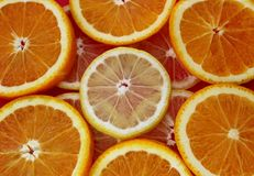 Tranches d'orange et de citron photographie stock