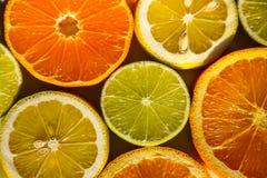 Tranches d'oranges, de citrons, de chaux et de mandarines Images stock