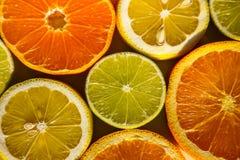 Tranches d'oranges, de citrons, de chaux et de mandarines Images libres de droits